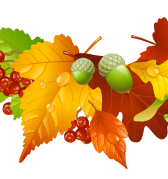 thanksgiving leaves border png free encode clipart to [ 1263 x 702 Pixel ]