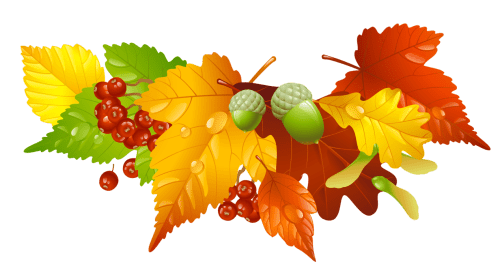 small resolution of thanksgiving leaves border png free encode clipart to