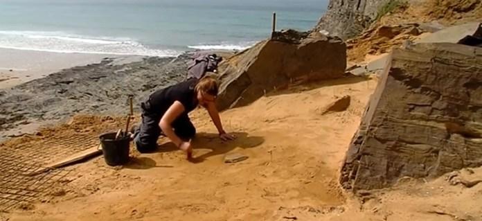 Sute de urme de paşi de neanderthalieni datând de acum 80.000 de ani, descoperite pe o plajă normandă