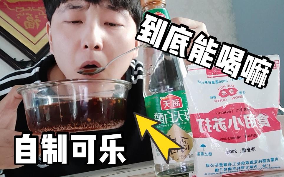 """用網上流傳的方法自制""""快樂肥宅水"""",自己做的可樂真的能喝嗎_嗶哩嗶哩 (゜-゜)つロ 干杯~-bilibili"""