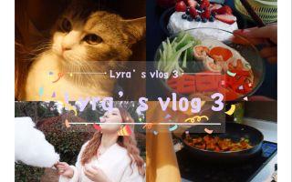 【vlog3】做饭新手 给男朋友做生日餐 放风筝 恋爱日常