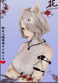 【游戏介绍】AI少女(附下载最新款)汉化107G-小柚妹站