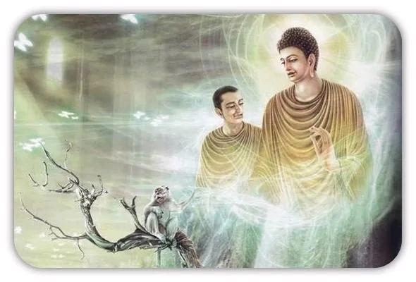 佛陀与阿难尊者的对话-小柚妹站