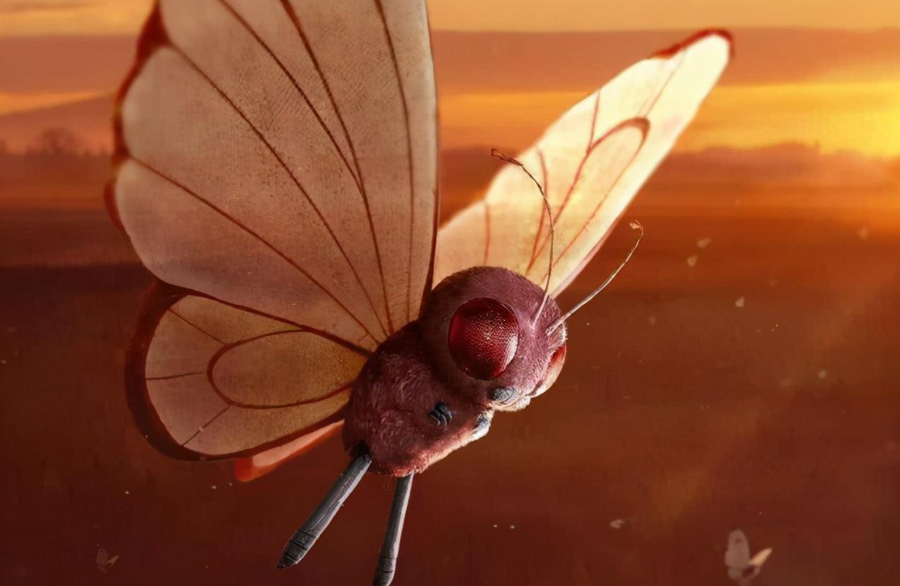《宝可梦》好用的粉末类招式有哪些?催眠粉是里面最看脸的?-小柚妹站