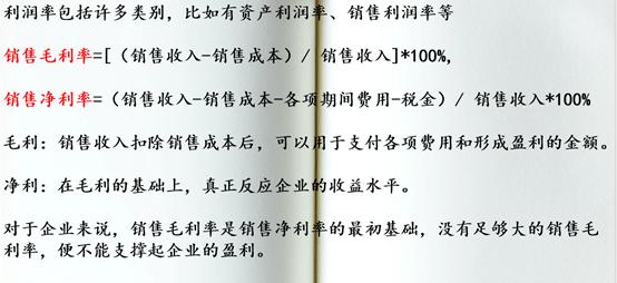 财务报表(26):毛利率,净利率-小柚妹站