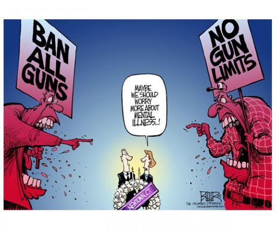 http://knowyourmeme.com/memes/events/gun-control-debate