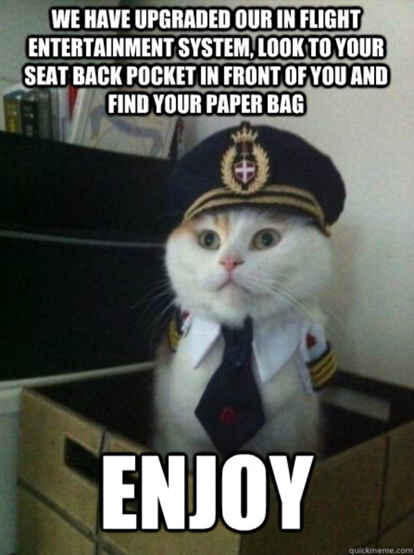 Image  467930  Captain Kitteh  Know Your Meme