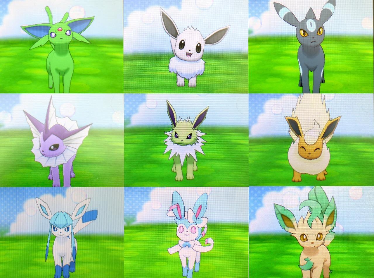 Eevee Evolutions Pokemon Black And White X