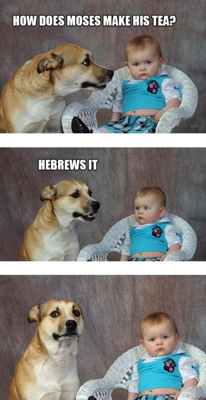 Corny Jokes Are Actually Funny