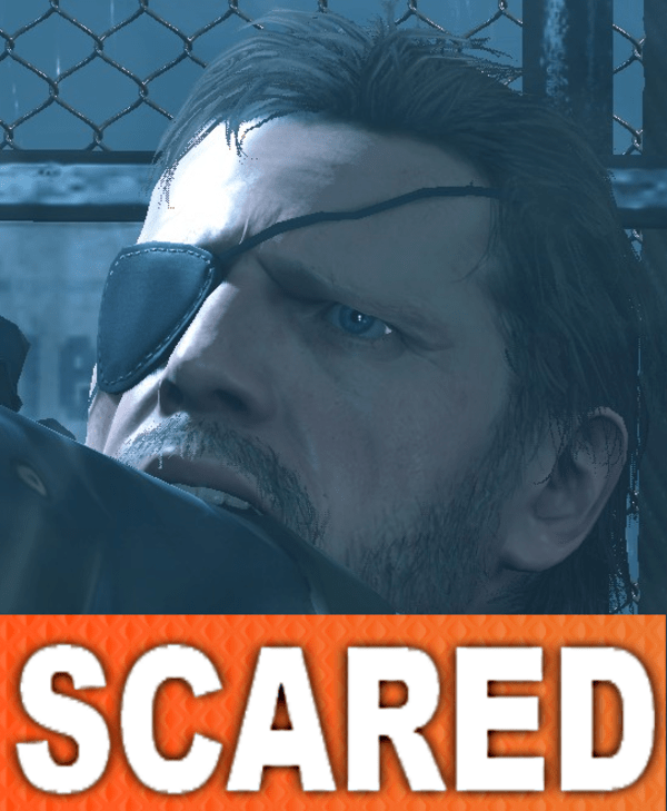 Scared Snake Metal Gear Solid V Know Your Meme