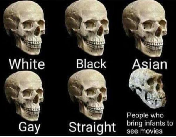 Caucasian American African Skull Skull Vs