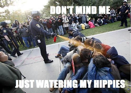 Don't Mind Me, Just Watering My Hippies