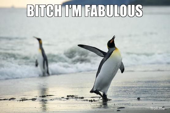 """A picture of a penguin walking with the caption """"Bitch, I'm fabulous""""."""