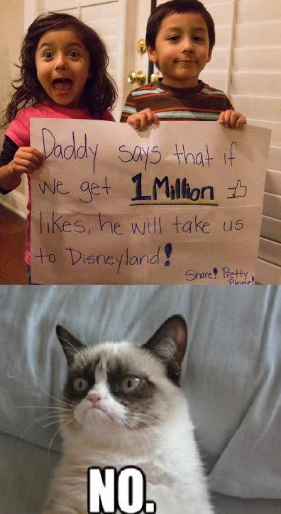 Grumpy Cat Says No To Disney World Grumpy Cat Know
