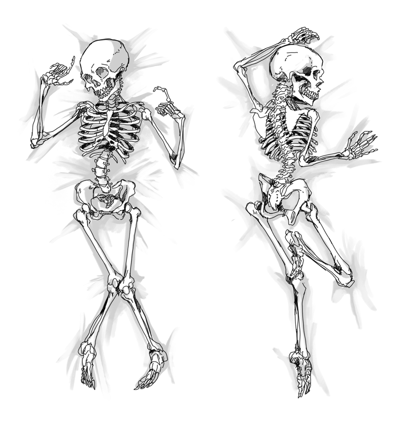 Skeleton Dakimakura  Dakimakura  Body Pillow  Know Your