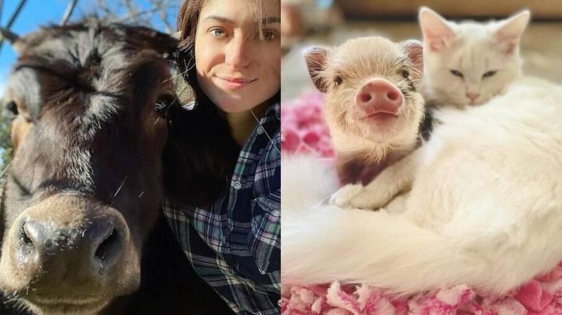 Adri Rachelle já resgatou quase 200 animais, independente da espécie