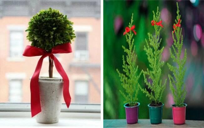 O laço na planta é um truque rápido, fácil e barato que complementa a decoração