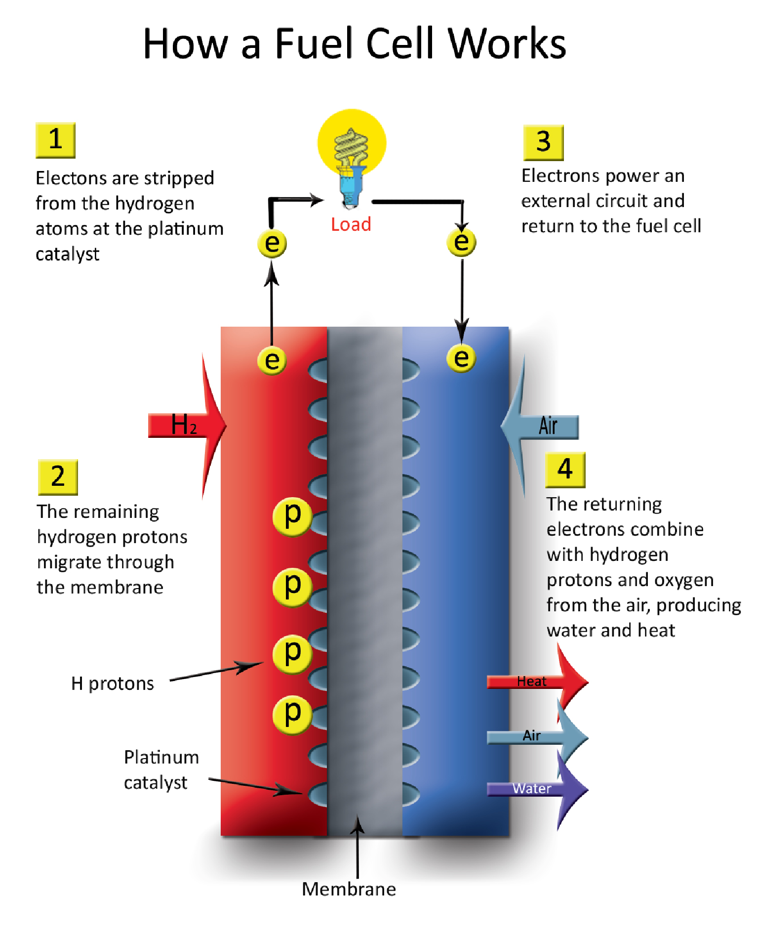 hight resolution of  how a fuel cell works 2