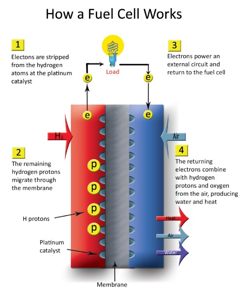 small resolution of  how a fuel cell works 2