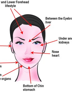 Chinese Acne Chart Wwwhomeschoolingforfreeorg - Acne face map organs