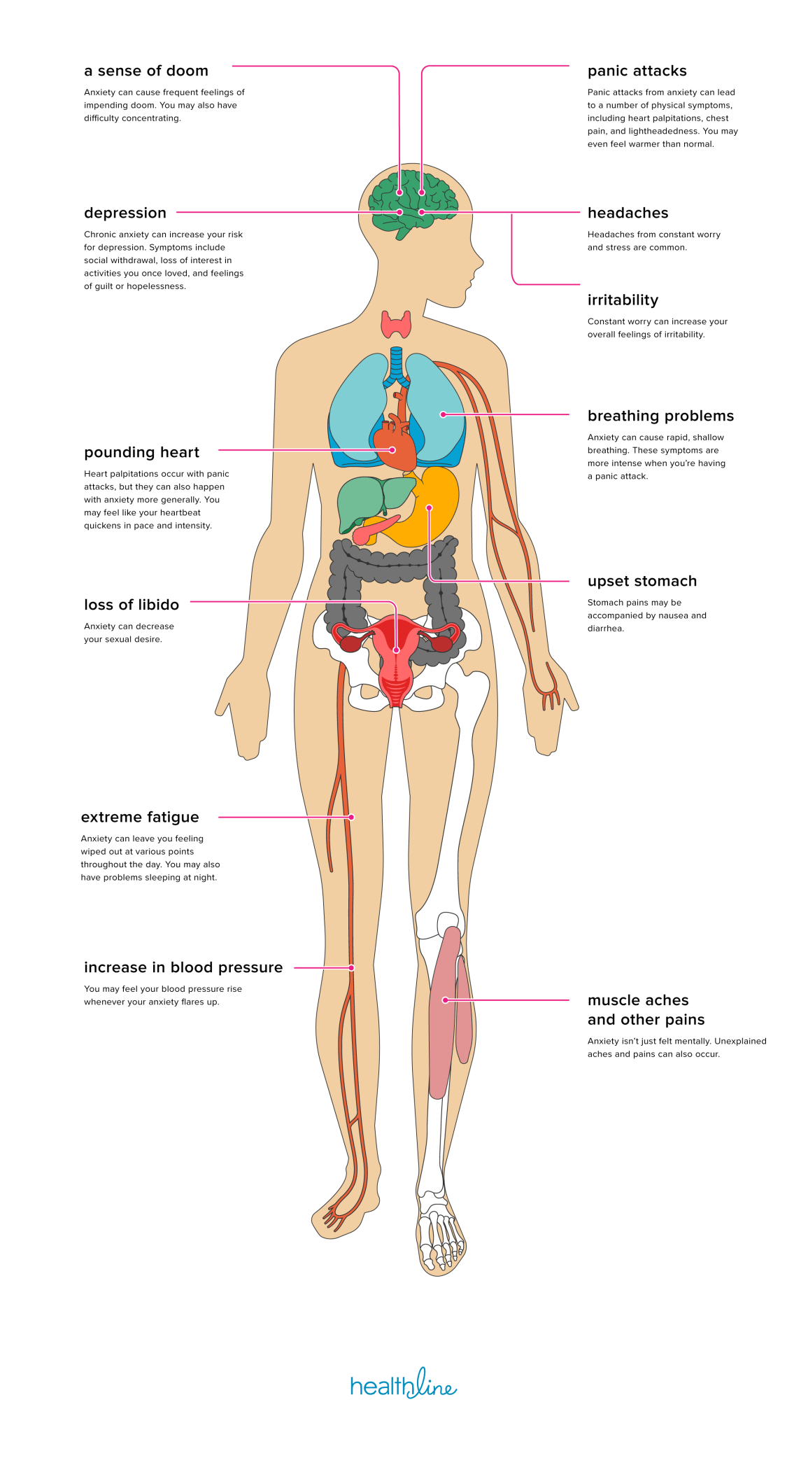 hight resolution of the effects of anxiety on the body