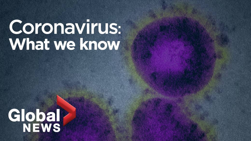 What are coronavirus symptoms? In mild cases, just like the common ...