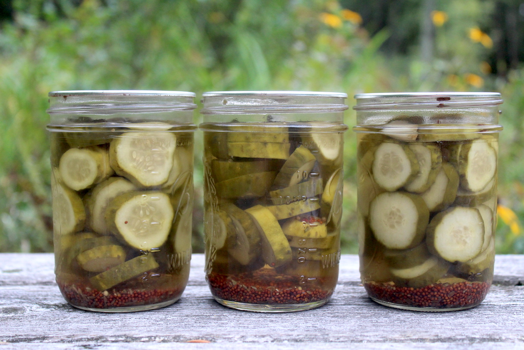 Dill Pickles Images