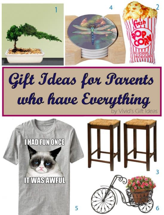 Unique Gift Ideas For Parents Who Have Everything Vivid S