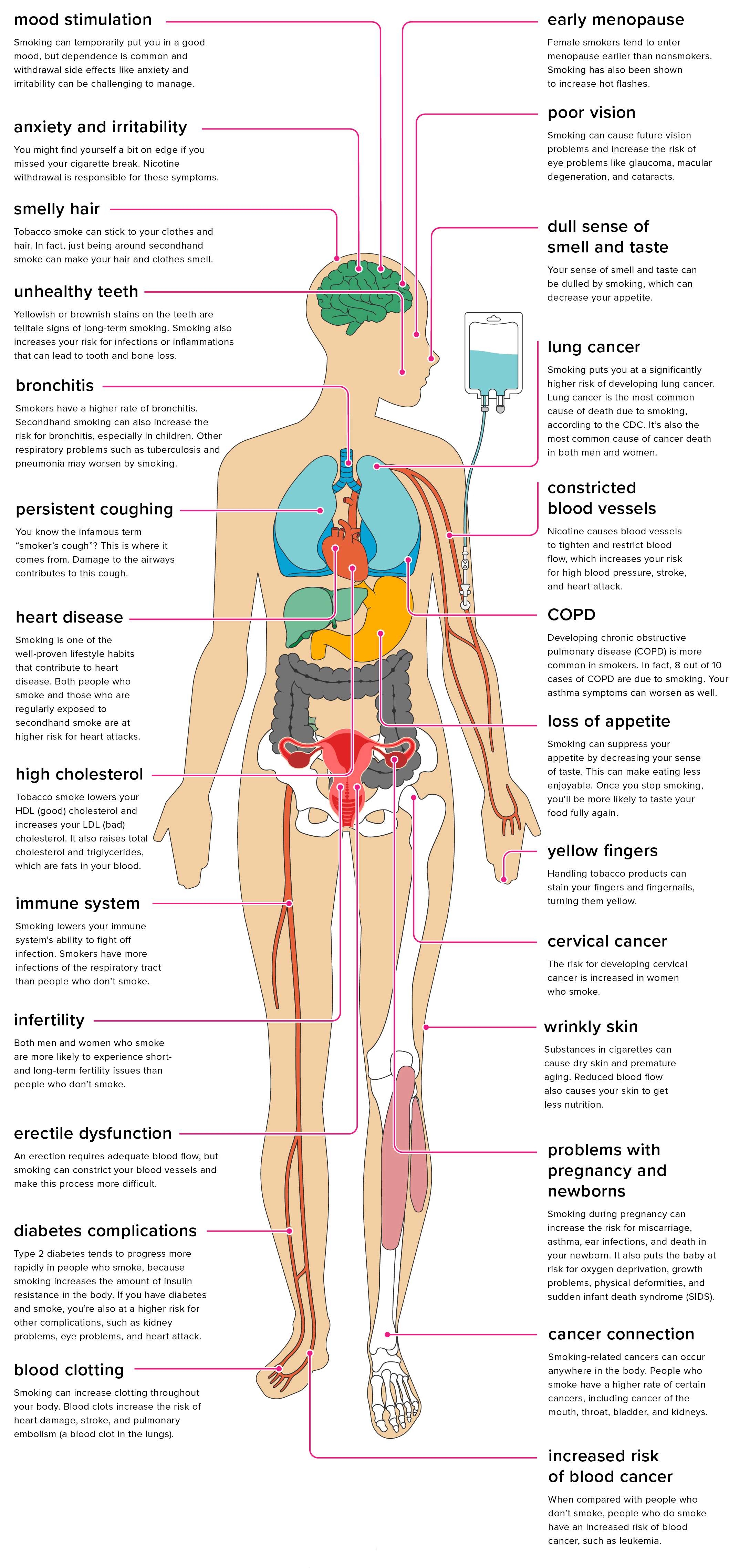 hight resolution of diagram of effects of smoking to your body wiring diagram blog body parts chart 26 health