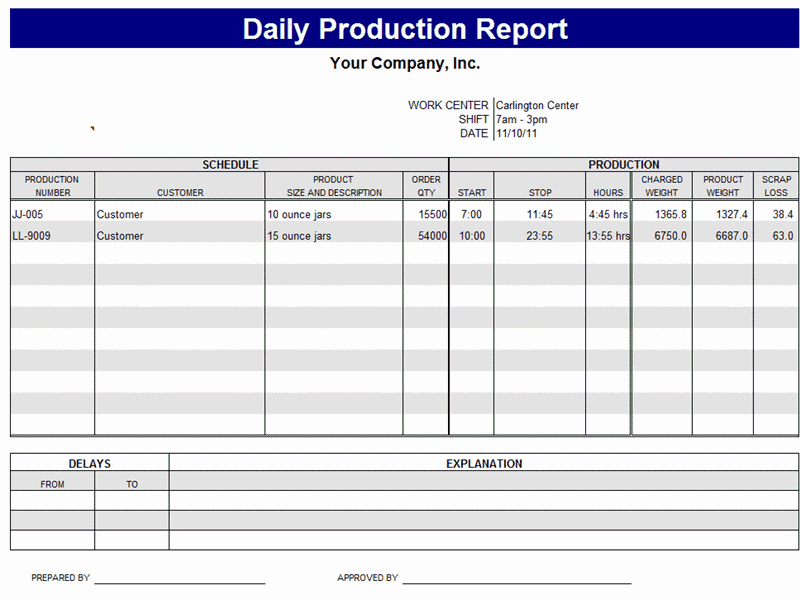 daily production report sample