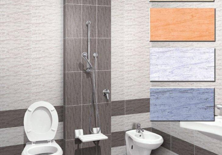 Bathroom Designs Small Bathrooms India