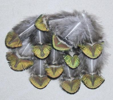 lot de 10 plumes vertes de corps paon confection mouche
