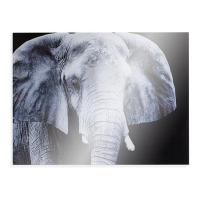 "Southern Enterprises ""The Elephant"" Glass Wall Art ..."