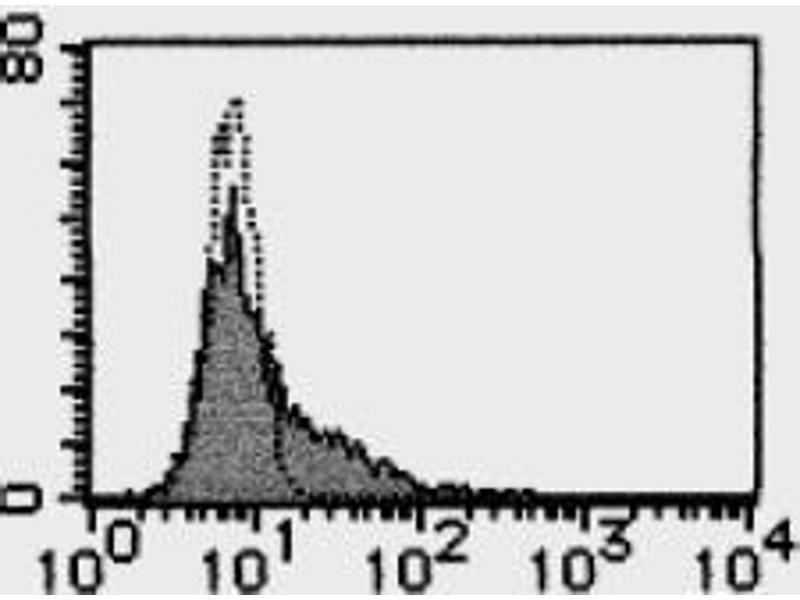 Mouse anti-Human LGALS9 antibody (ABIN1449219)