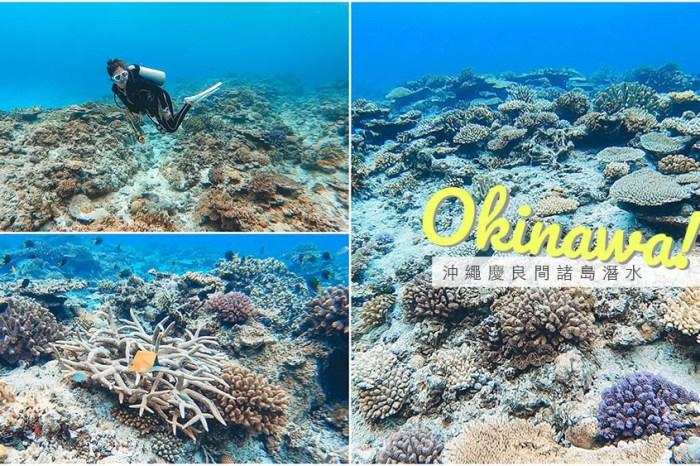 沖繩慶良間諸島潛水、浮潛半日遊 能見度30米的夢幻海底花園