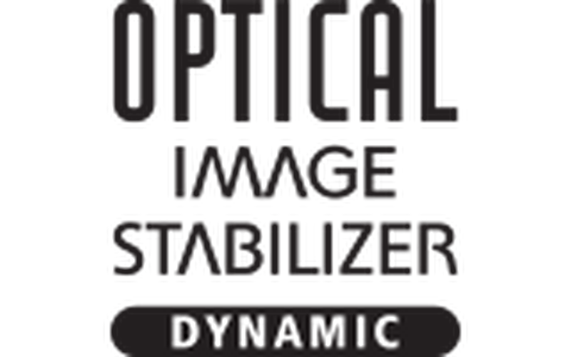 Image Stabiliser With Dynamic Mode
