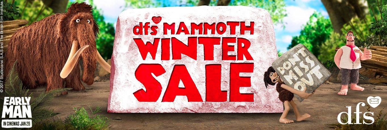 dfs sofa reviews 2018 bagsie second hand winter sale  