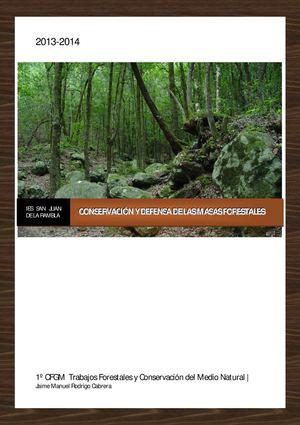 Calamo  Conservacin Y Defensa De Las Masas Forestales