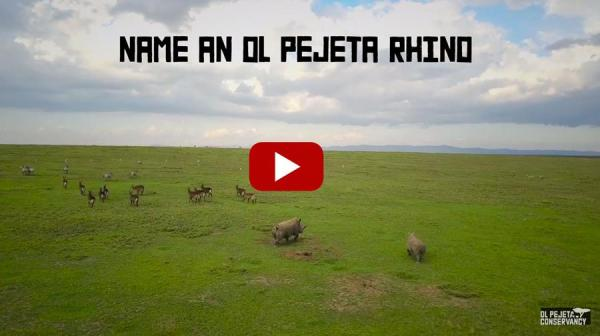 Name a rhino on Ol Pejeta