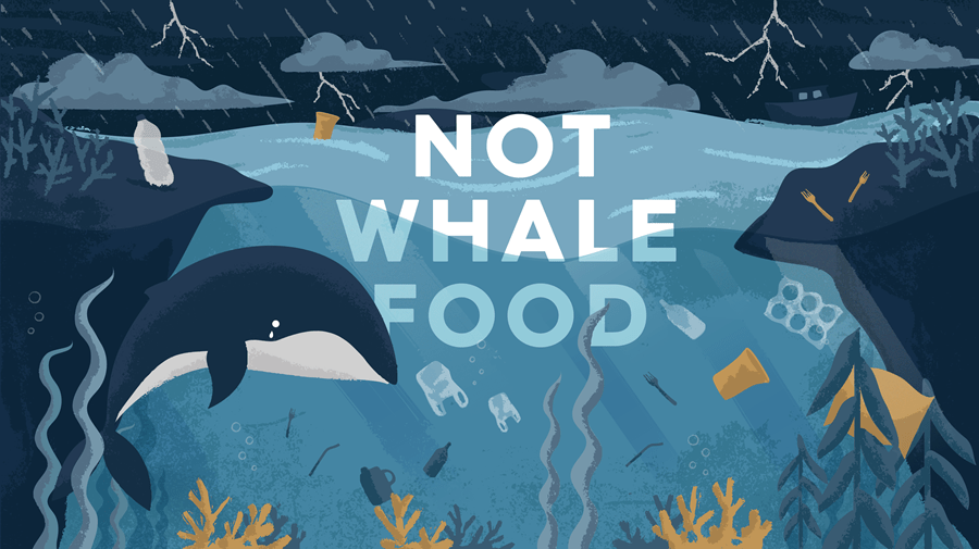 Not whale food underwater scene