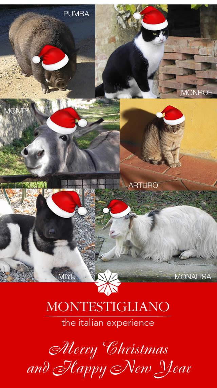 Merry Christmas and Happy New Year - Montestigliano Italian experience