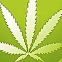 420 Evaluations - Medical Marijuana Blog