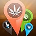 THCFinder - Marijuana Blog