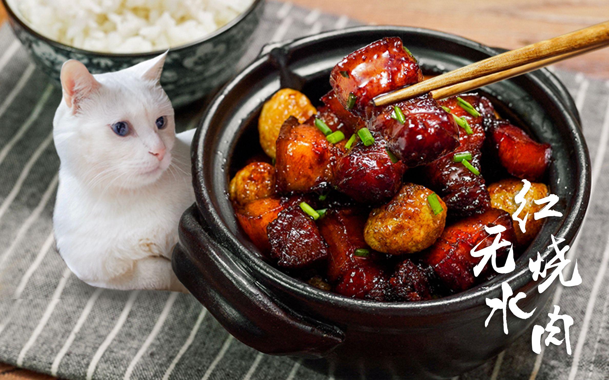 【日食記】最近吃不下飯,我怕是命里缺紅燒肉了( ̄O ̄;)_美食圈_生活_bilibili_嗶哩嗶哩