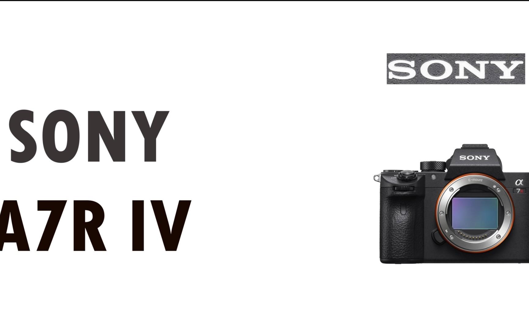 Sony A7r4 - Cover Letter Resume Ideas - wppluginninja us