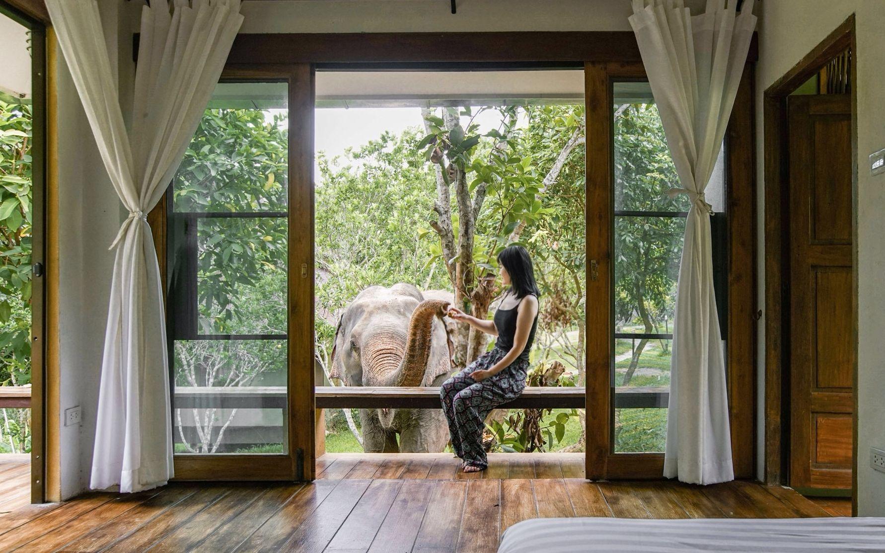 她從紐約搬到泰國叢林6年:原始生活能讓人停止攀比,真正享受人生_嗶哩嗶哩 (゜-゜)つロ 干杯~-bilibili