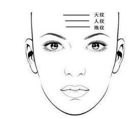 額頭皺紋看運勢。額頭仰月紋。主大貴 - 每日頭條