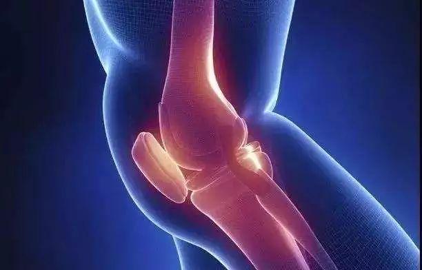 幹細胞真的能夠治療骨關節炎嗎?看看幹細胞怎樣拯救膝關節 - 每日頭條