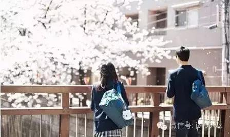 漂洋過海留學日本,回國後拿著一月3000 - 每日頭條