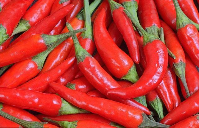 世界上10種最辣辣椒排名,無一種在中國 - 每日頭條